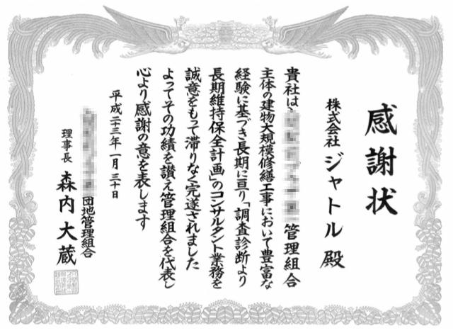 20110130_mozaic